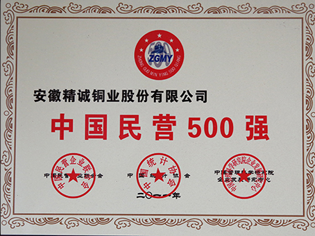 China Top 500 Private Enterprise