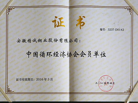 Member of China Association of Circular Economy